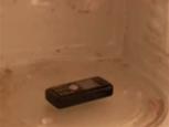 携帯電話をレンジでチンしたら、得体の知れないものを召還してしまった動画.jpg