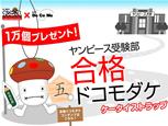 ヤンピース×Docomo_mini.jpg